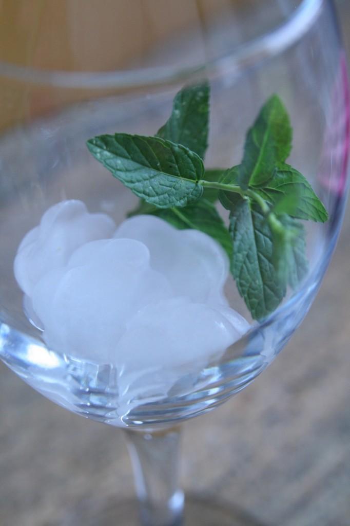 מוסיפים קוביות קרח